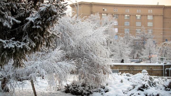 Почему в Новосибирске задержалась морозная погода и когда будет оттепель — прогноз от синоптиков