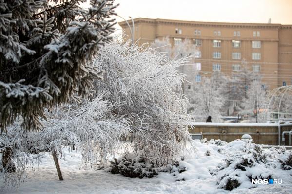 В ближайшие дни в Новосибирске установится теплая и снежная погода
