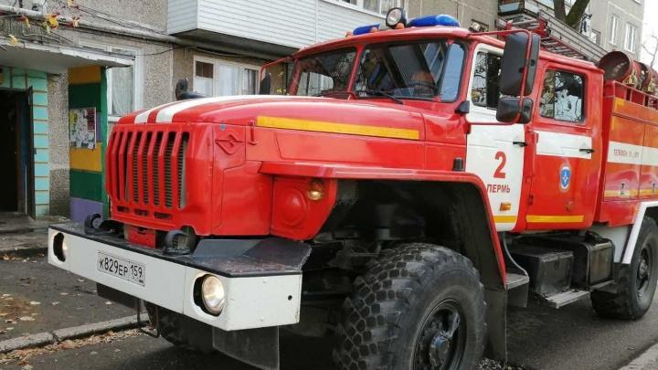 «Люди с балкона просили о помощи»: на пожаре в Перми спасли 14 человек