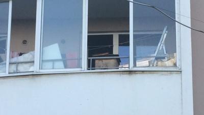 «Взял улей на починку домой»: родственница пчеловода с Эльмаша объяснила, зачем он устроил пасеку на балконе
