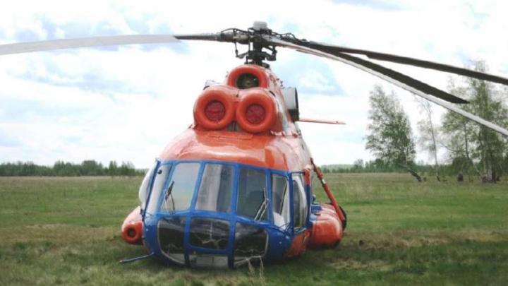 «Создалось впечатление, что птица атакует вертолёт»: названа точная причина крушения Ми-8 под Омском