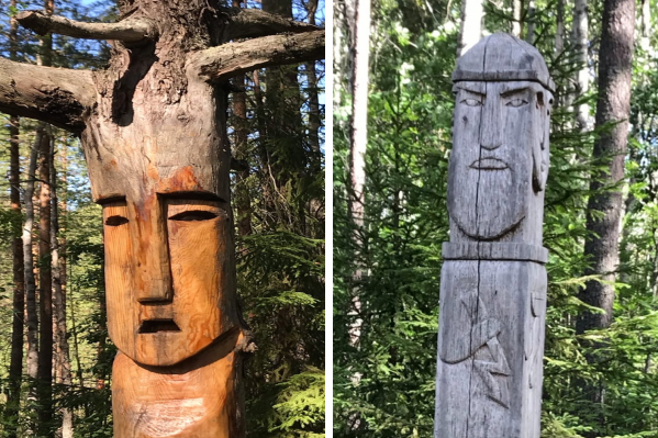 Стоит углубиться в лес и можно найти не только грибы, но и кое-что поинтереснее