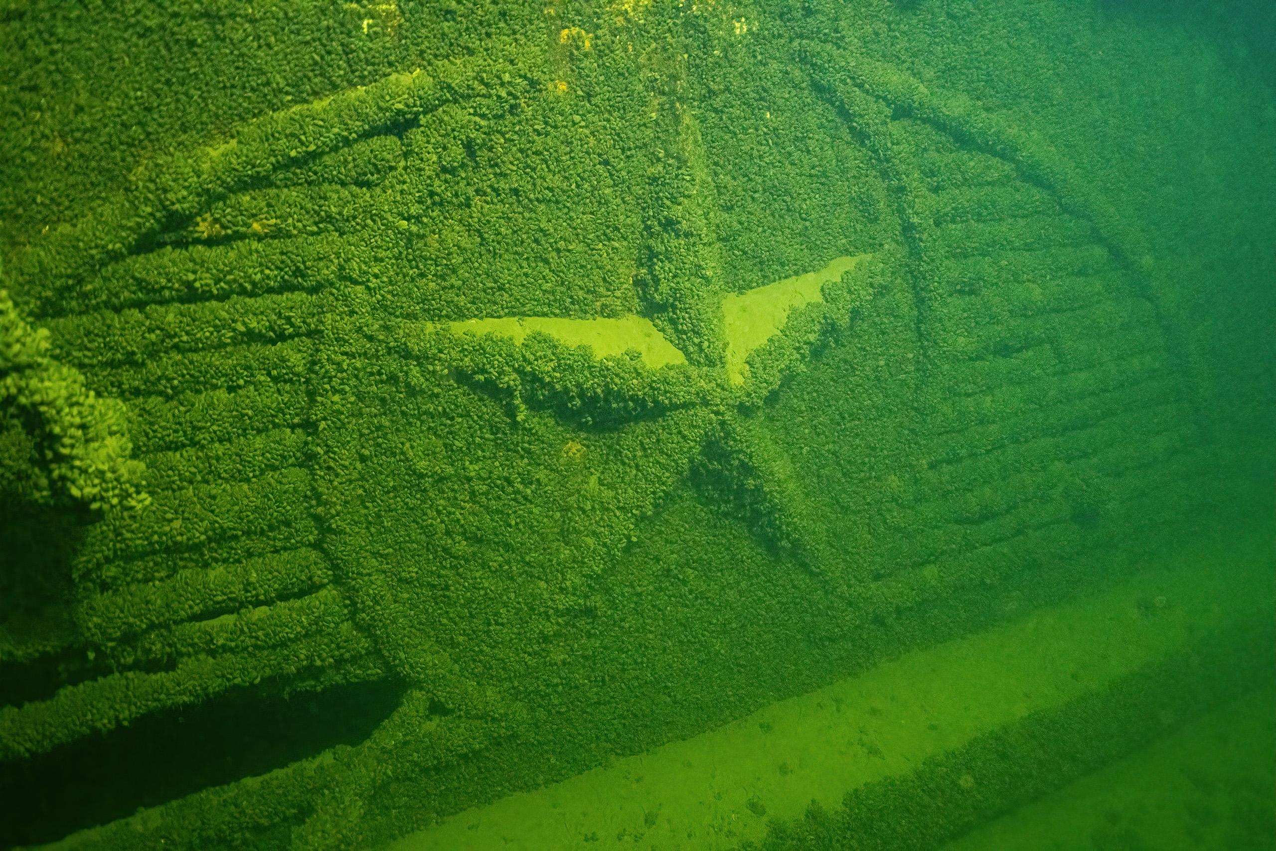 Корабль покрылся слоем ила, который предстоит убрать