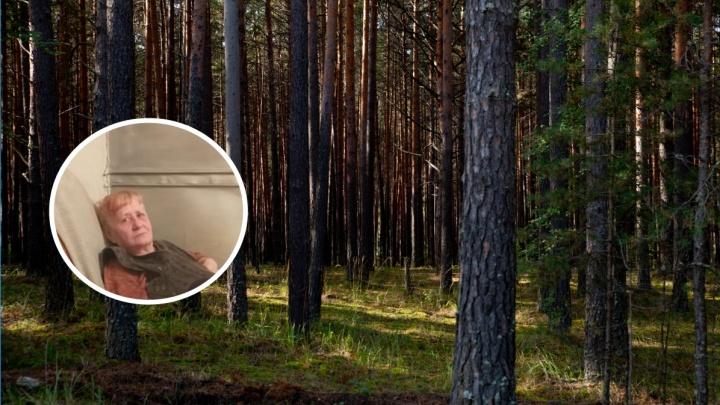 В Нижней Тавде пенсионерка пошла за грибами и пропала. Для ее поисков нужны волонтеры