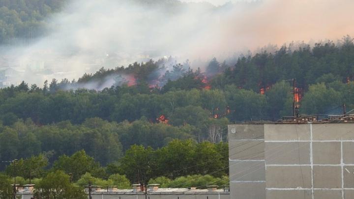 «Машинам туда не подъехать»: более ста пожарных тушат лес на Тургояке