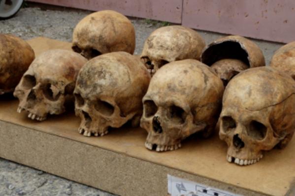 В нескольких мешках хранились черепа и кости
