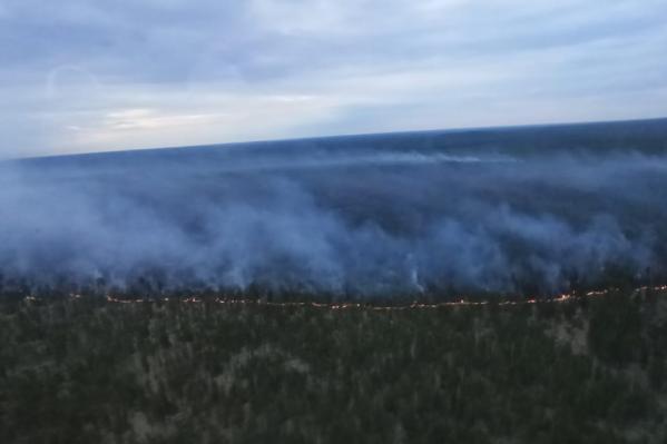Пожар увидели с высоты