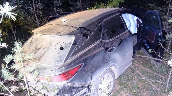 В Пинежском районе автомобиль влетел в дерево. Одну пассажирку увезли в больницу