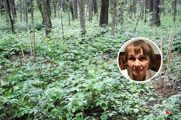 Нина Павловна может находиться в лесу