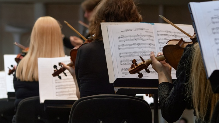 Донское правительство потратит один миллион рублей на концерт без зрителей