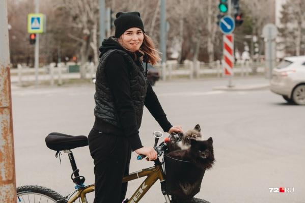 В Тюменской области во время пандемии гулять с собакой можно неограниченное число раз. Этим пользуются многие