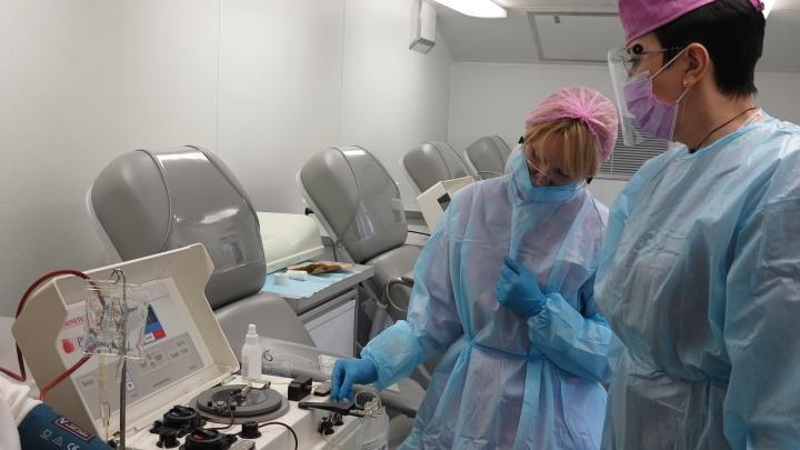 В Екатеринбурге больному впервые перелили плазму с антителами для борьбы с коронавирусом