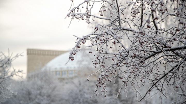 Синоптики рассказали, когда в Новосибирской области потеплеет до -5 градусов