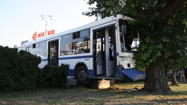 В момент удара водителя на сиденье не было: стала известна причина ДТП с автобусом на Плотинке