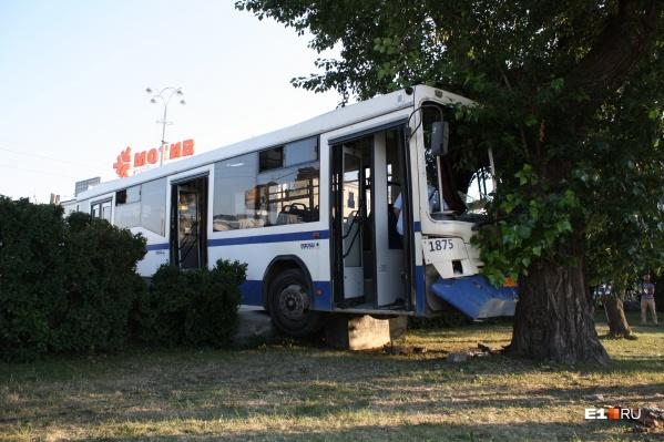 Автобус съехал с проспекта и врезался в дерево