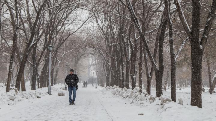 Снег и ветер при +6. Какой будет погода до конца рабочей недели в Новосибирской области