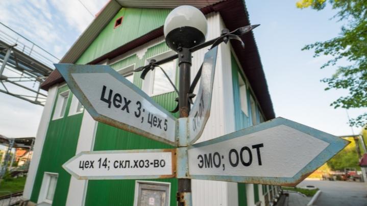 Детская железная дорога в Перми появится в следующем году