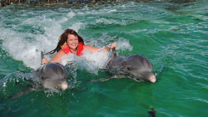 Купание с дельфином, Венеция и Синай — все это будет, а пока смотрим фото из ваших последних отпусков