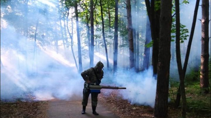Свершилось: в Уфе начали бороться с нашествием комаров
