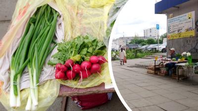 «Такие цены поставили, с ума сошли!»: что из лесов и с огородов уже продают на рынках Архангельска