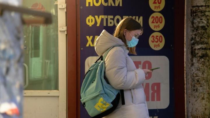 Жители Архангельской области начали получать по SMS результаты тестов на COVID-19