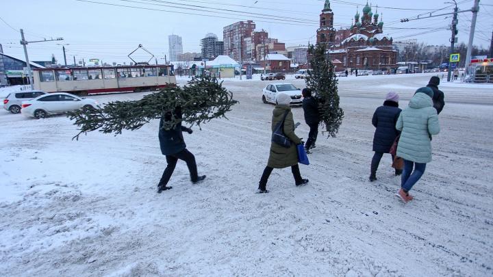 В Челябинске второй день идет снег. Синоптики рассказали, ждать ли сугробов к Новому году