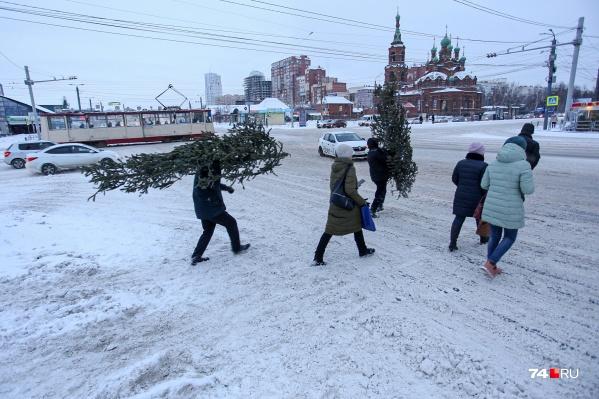 На обочинах в Челябинске образовались сугробы, но они еще подрастут<br>