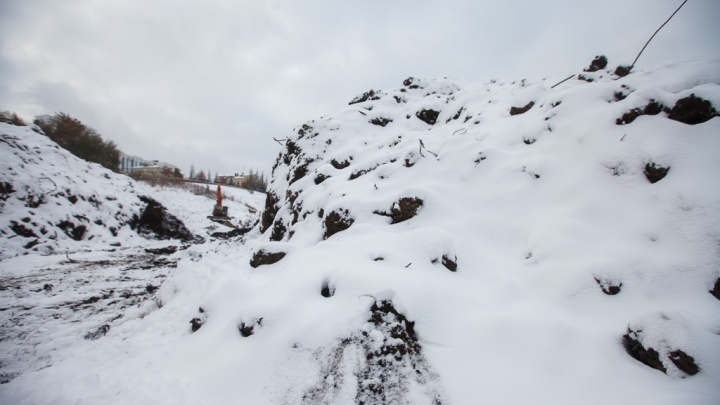 За снежную свалку тюменскую мэрию наказали на 12 миллионов рублей. Чиновники оспорят это решение