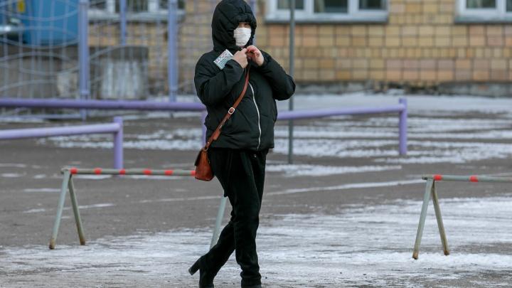 Красноярский край остается в десятке лидеров по числу заболевших: +420 за сутки