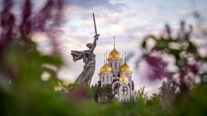 «На английском языке»: главный сайт о волгоградском туризме модернизируют за 2,5 млн рублей