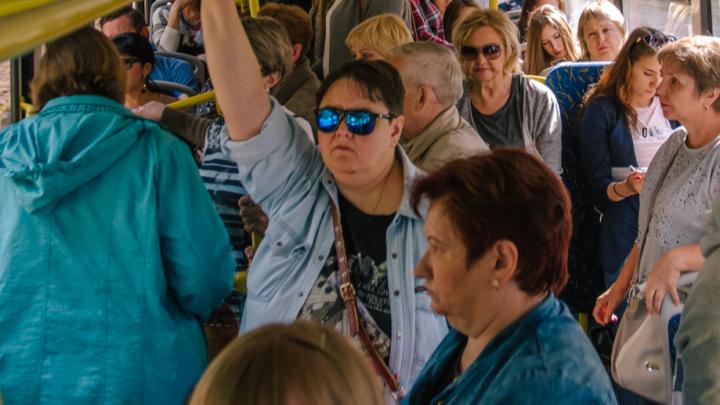В Самарской области озвучили цены на проезд в дачных автобусах