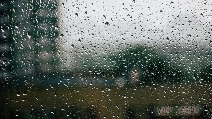 МЧС предупредило омичей о сильном ветре, грозе и дожде