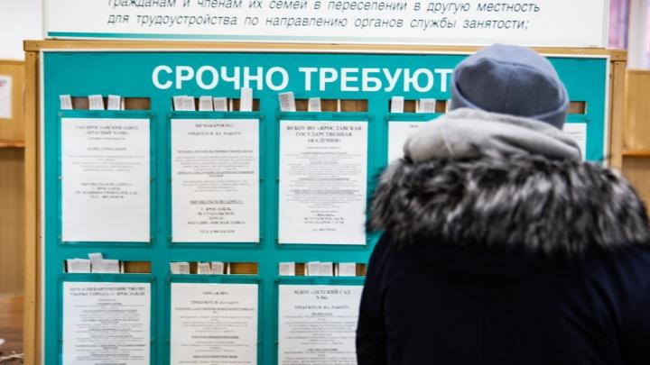 Вымрет половина профессий: ярославский экономист дал прогноз на ближайшие годы