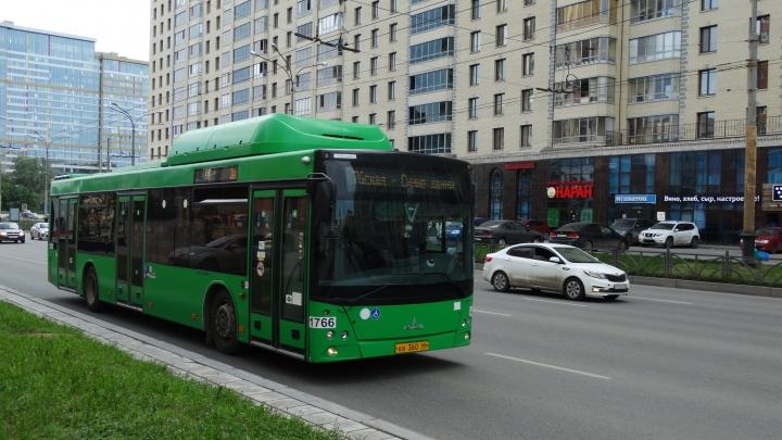 До торгового центра «Мега» пустят еще один автобусный маршрут
