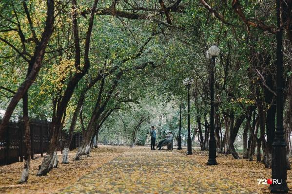 Начало осени в Тюмени и области оказалось капризным и переменчивым