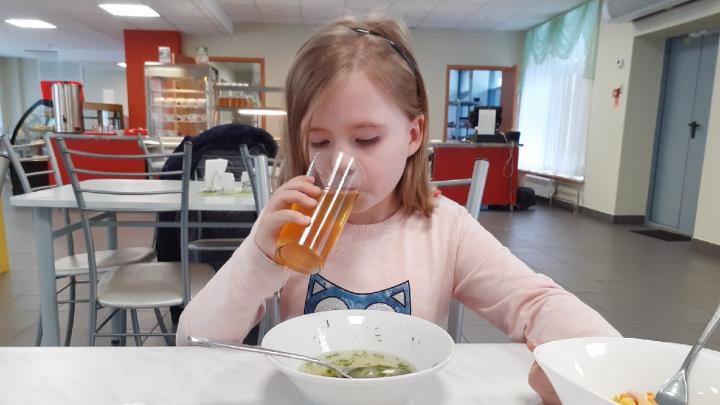Администрация Волгоградской области забрала 100% школьного питания в начальных классах
