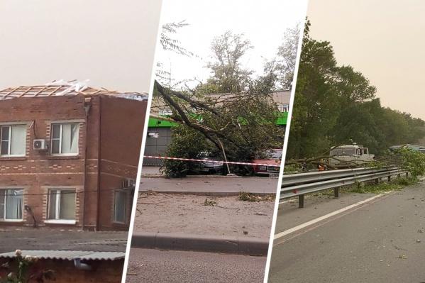 Штормовой ветер снёс как минимум одну крышу, повалил десятки деревьев и убил двух человек