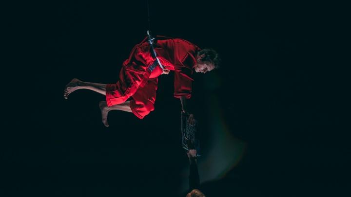 Театр-Театр открывается после карантина премьерой спектакля «Загадочное ночное убийство собаки»