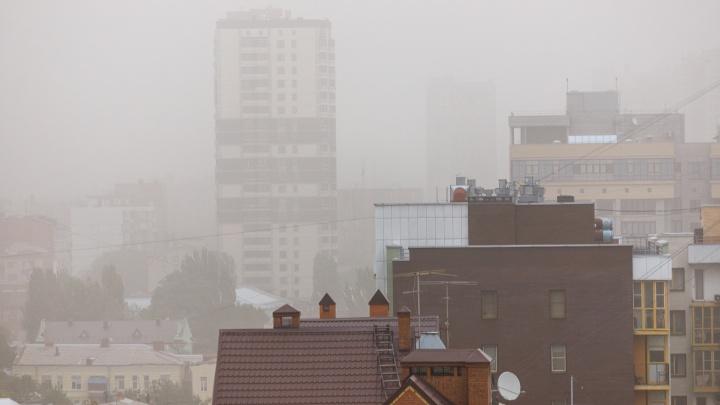 Можно ли было предотвратить пыльные бури в Ростове — синоптик и экологи разошлись во мнениях