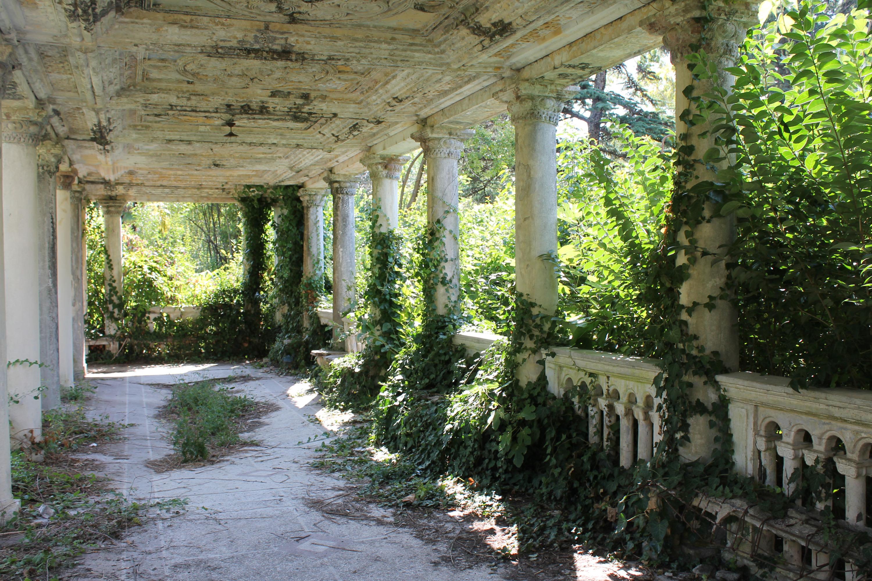 Некоторые здания почти полностью захватила природа