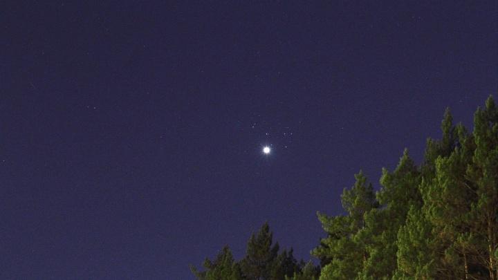 Можно увидеть раз в 8 лет: новосибирец снял Венеру в звездном скоплении Плеяд