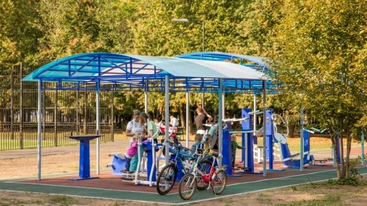 В двух районах Ярославля построят новые спортивные площадки: итоги народного голосования