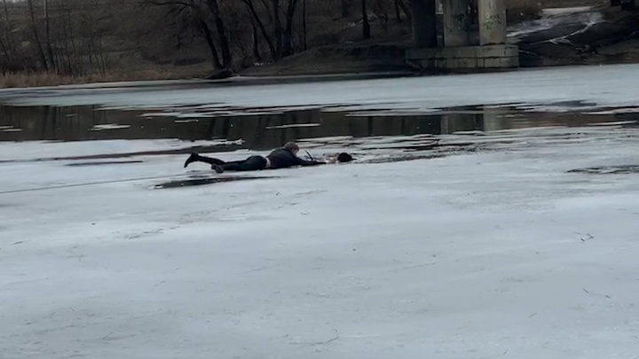 Житель Самары спас собаку, провалившуюся под лед: видео