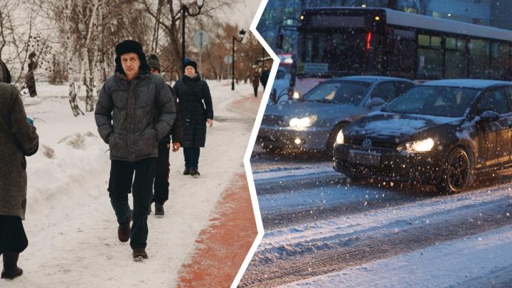 Водители против пешеходов: 7 высказываний читателей о колонке тюменки об отказе от автомобиля
