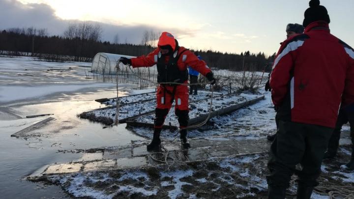 «Первой страдает соседка тетя Клава»: в Холмогорском районе подтопило деревню — видео МЧС