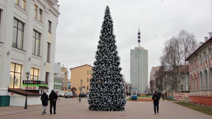 Дыхание Нового года: на проспекте Чумбарова-Лучинского установили елку