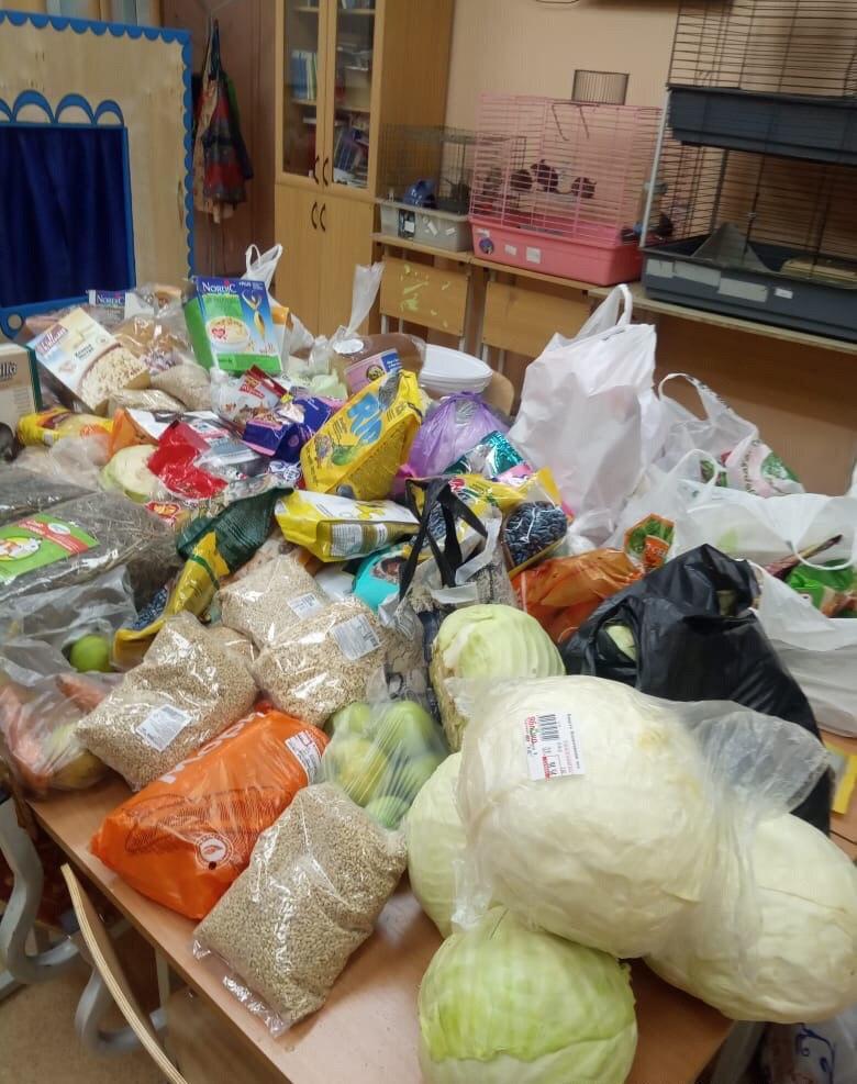 Вот сколько еды для животных принесли горожане