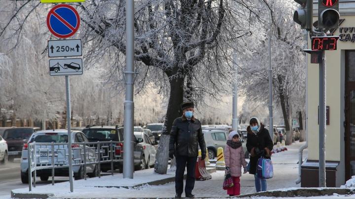 В Башкирии 750 школьников перевели на дистанционное обучение по просьбе родителей