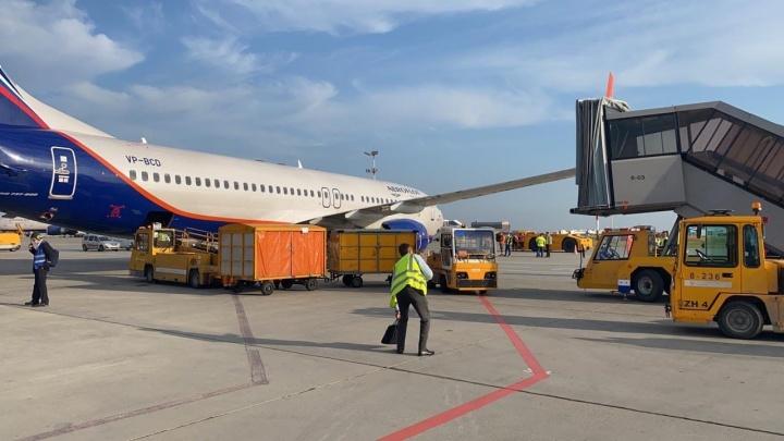 Самолет Тюмень — Москва столкнулся с трапом в Шереметьево
