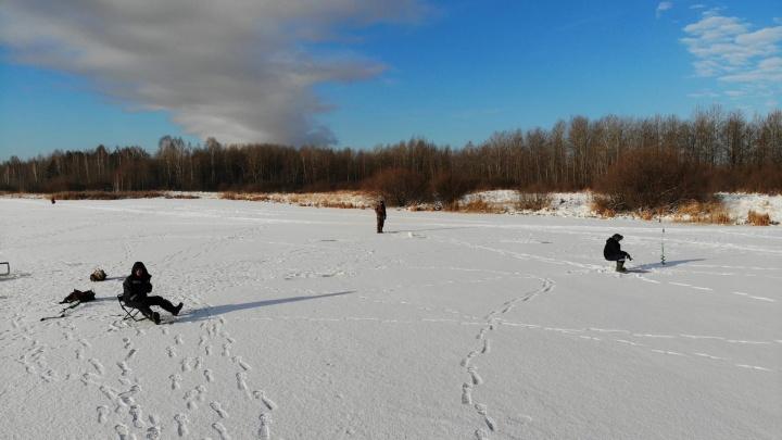 Где зимой поймать щуку, окуня, судака, леща в Тюмени и пригороде? Список мест от опытного рыбака